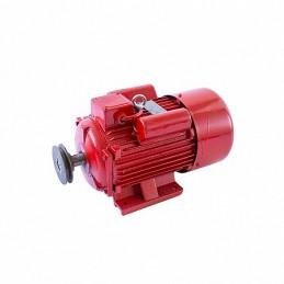 Motor electric 4,5 KW 3000rpm TROIAN ROSU