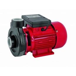 Pompa de apa de suprafata Raider RD-1.5DK20, 750W
