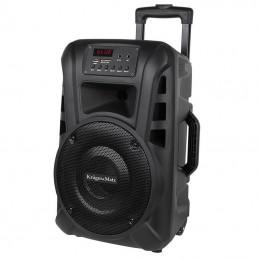 Boxa activa UHF 10 inch, 20W, 2 microfoane, portabila