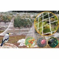 Plase protectie impotriva pasarilor